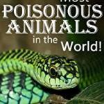 Venomous Marine Animals Science for Kids : Lesson Plan